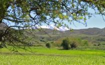 Центральный Крит